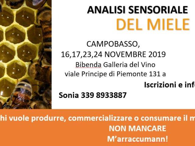 Copertina Analisi Sensoriale 2019
